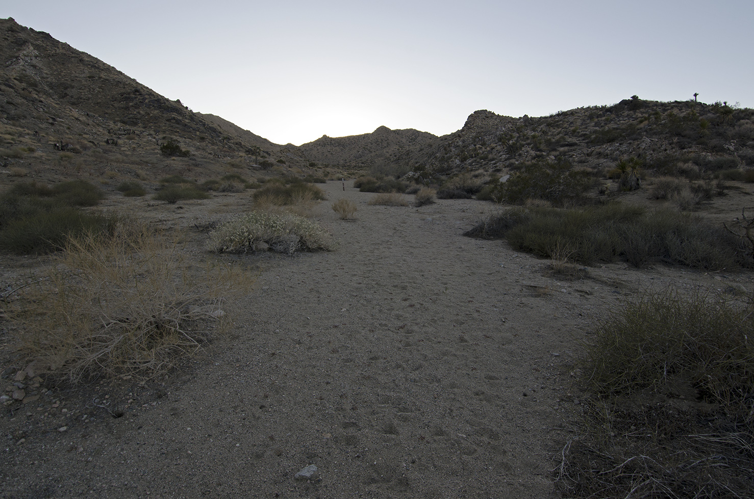 Pushawalla Canyon at Pinyon Well Junction