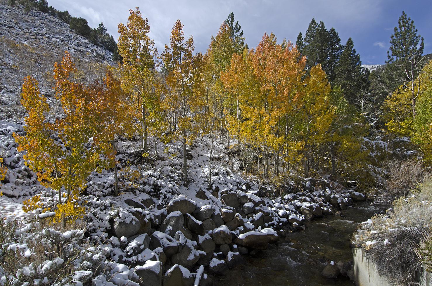 Rock Creek 01.jpg