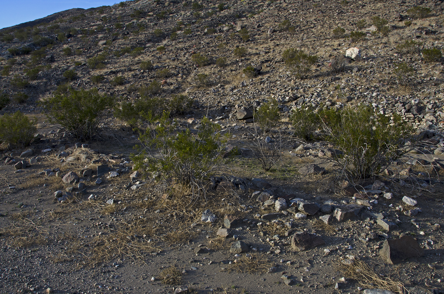 One of the possible building sites along the base of the mountains.