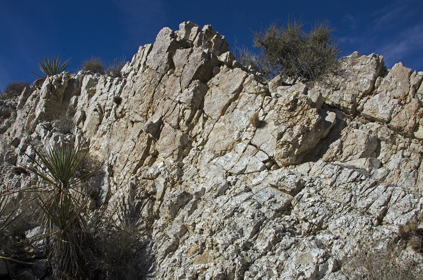 The picture doesn't really show how big this outcropping of white quartz is, but this wall must have been at least twenty feet tall. It continues on the other side of the wash for a long distance.