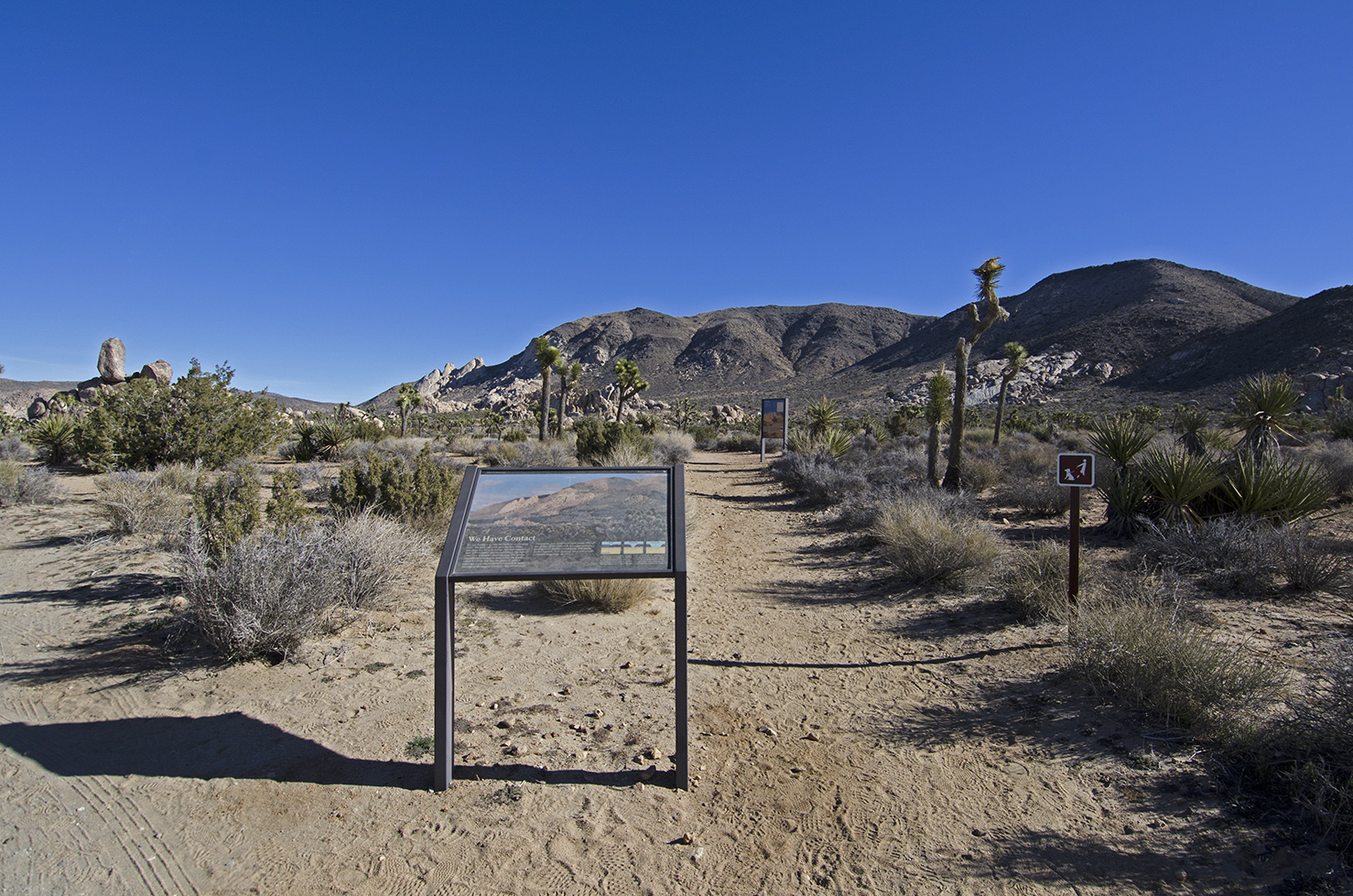 Trailhead from Ryan Campground