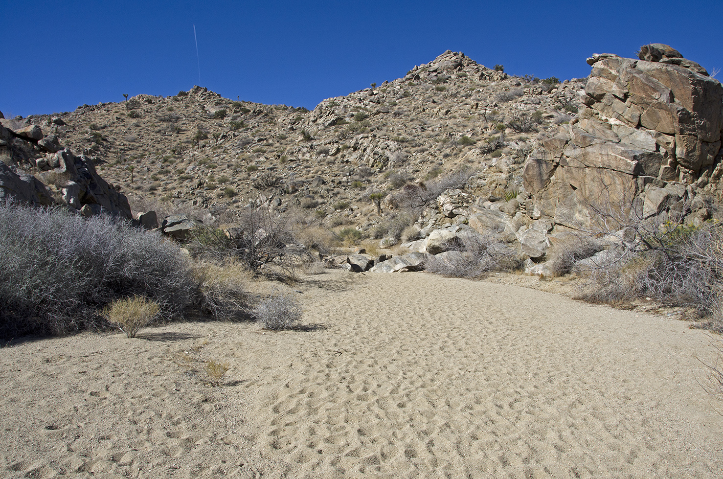 I feel I am not the first to hike Pinyon Well Canyon....