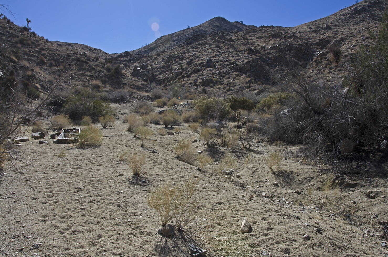 First view of Pinyon Well settlement area