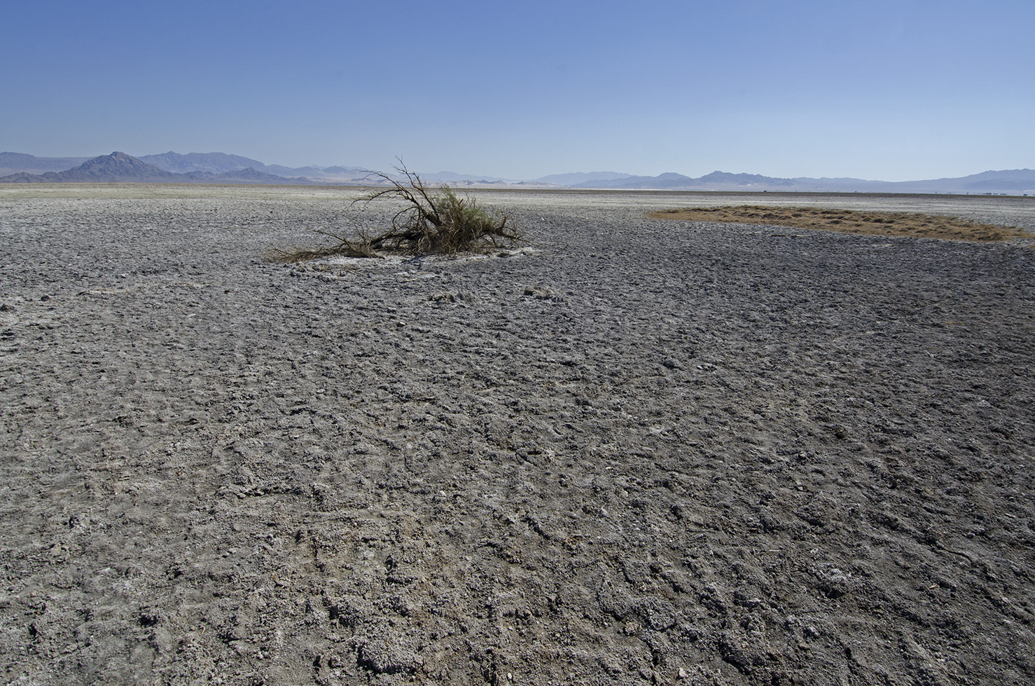 Looking out at the dry lake.