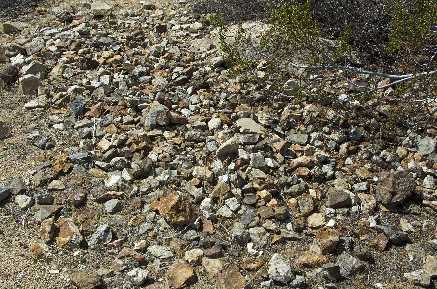 I couldn't figure out why all these broken rocks were in this spot.