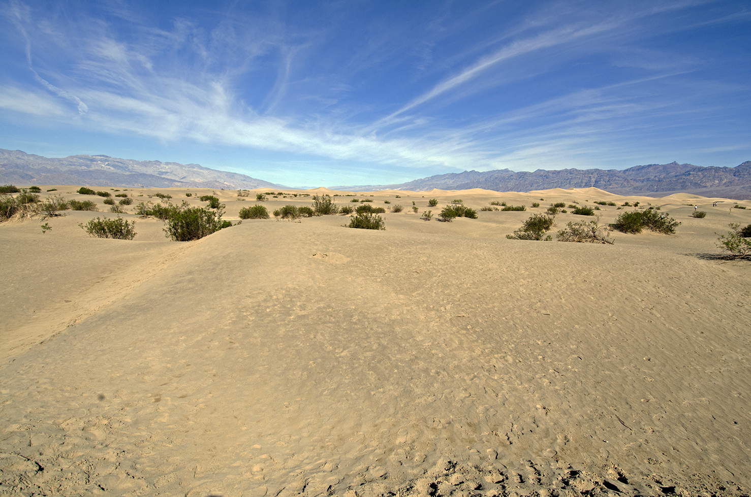 Sand dunes: hotter than they look. And this looks hot.