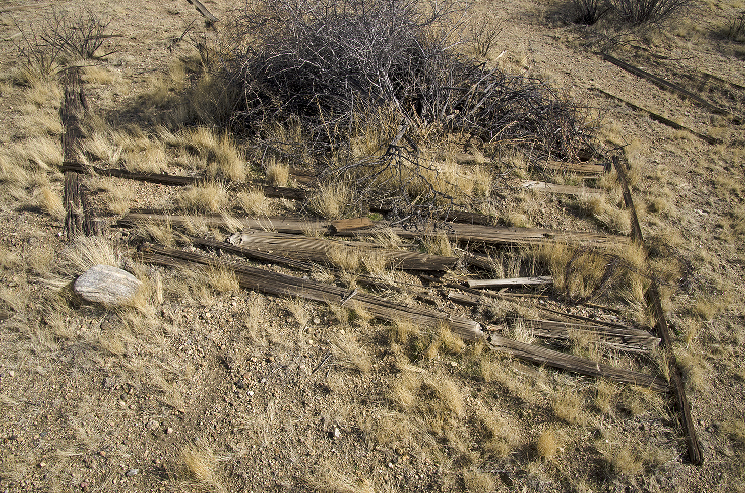 Samuelsons Rocks - Joshua Tree NP - 09.jpg
