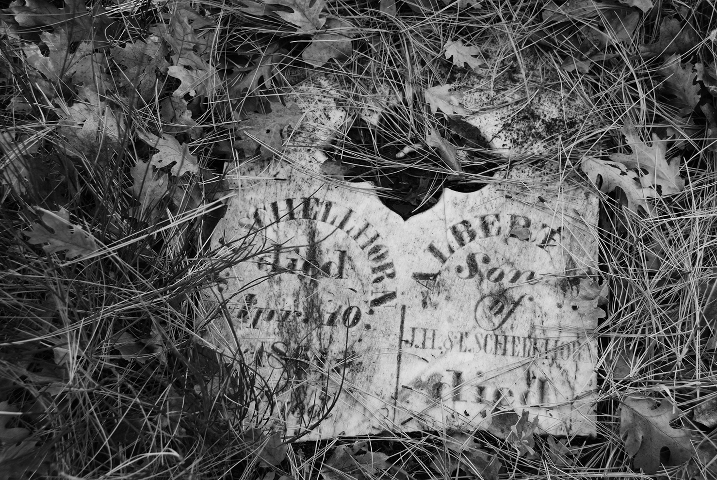 Nevada City Pioneer Cemetery Shellhorn Broken.jpg
