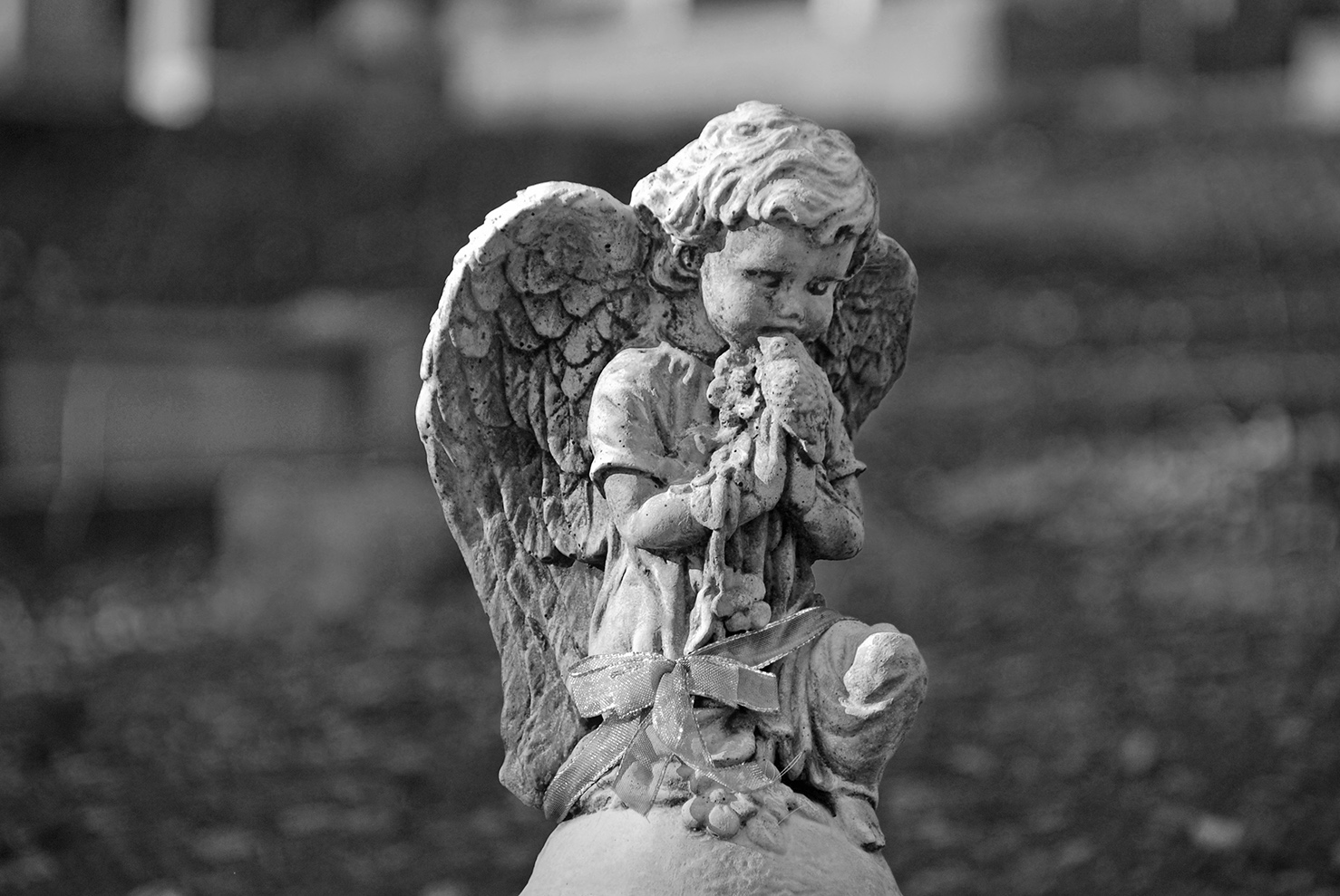 Sutter Creek City Cemetery Angel.jpg