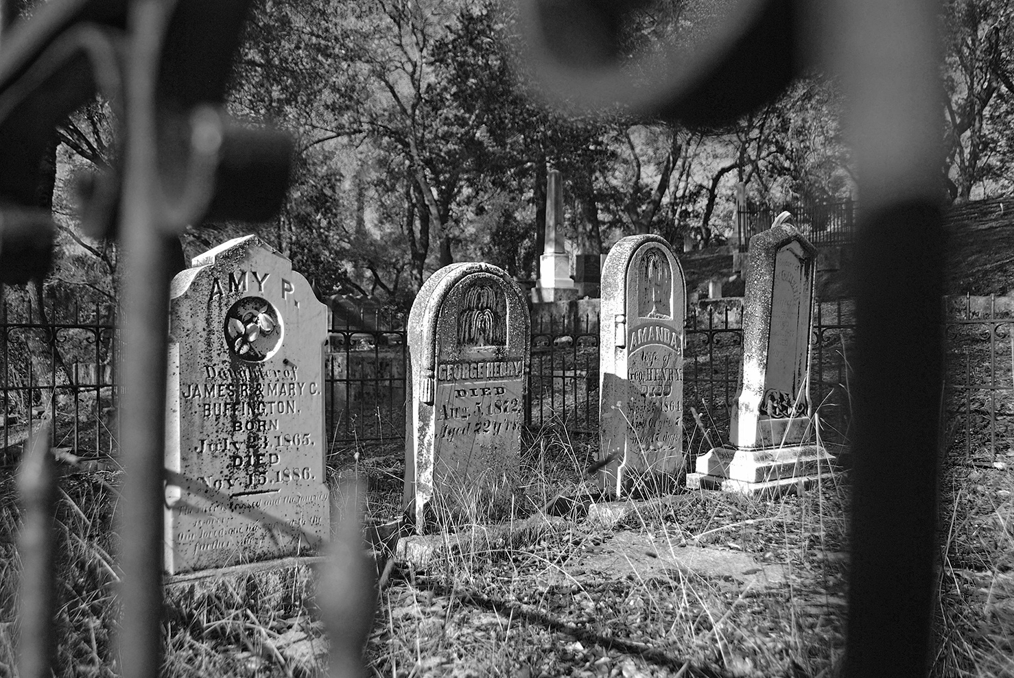 Sutters Mill Cemetery Four Stones.jpg