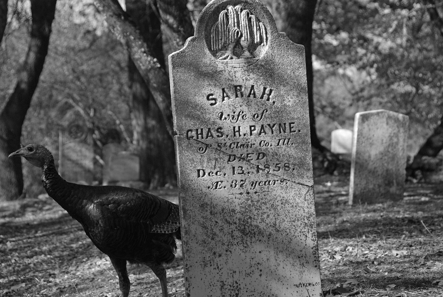 Sutters Mill Cemetery Sarah.jpg