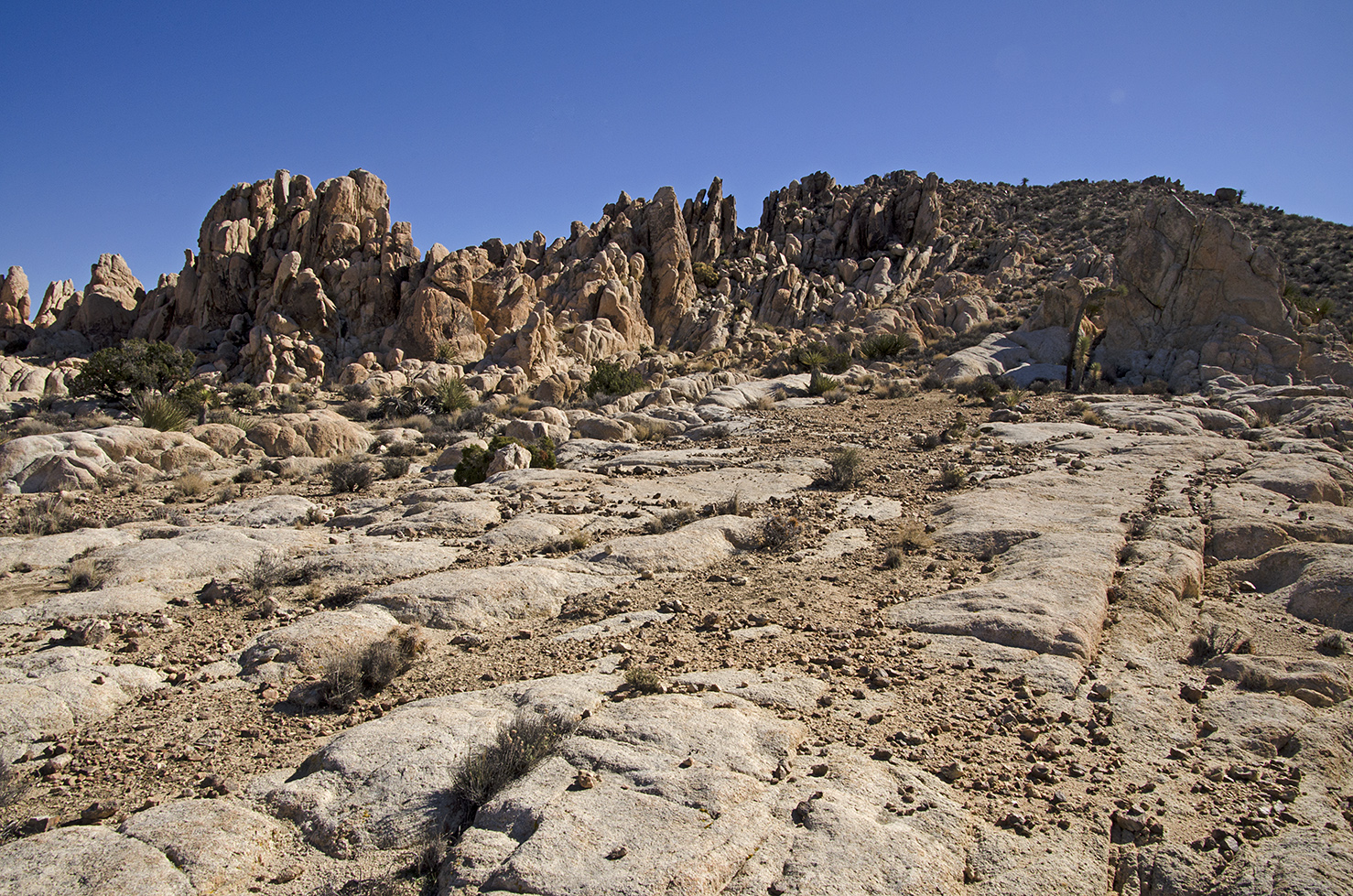 Surprise Tank - Joshua Tree NP - 14.jpg