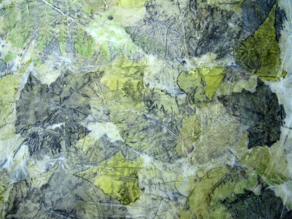 Eco print detail - grey and yellow birch, swamp maple, bracken fern