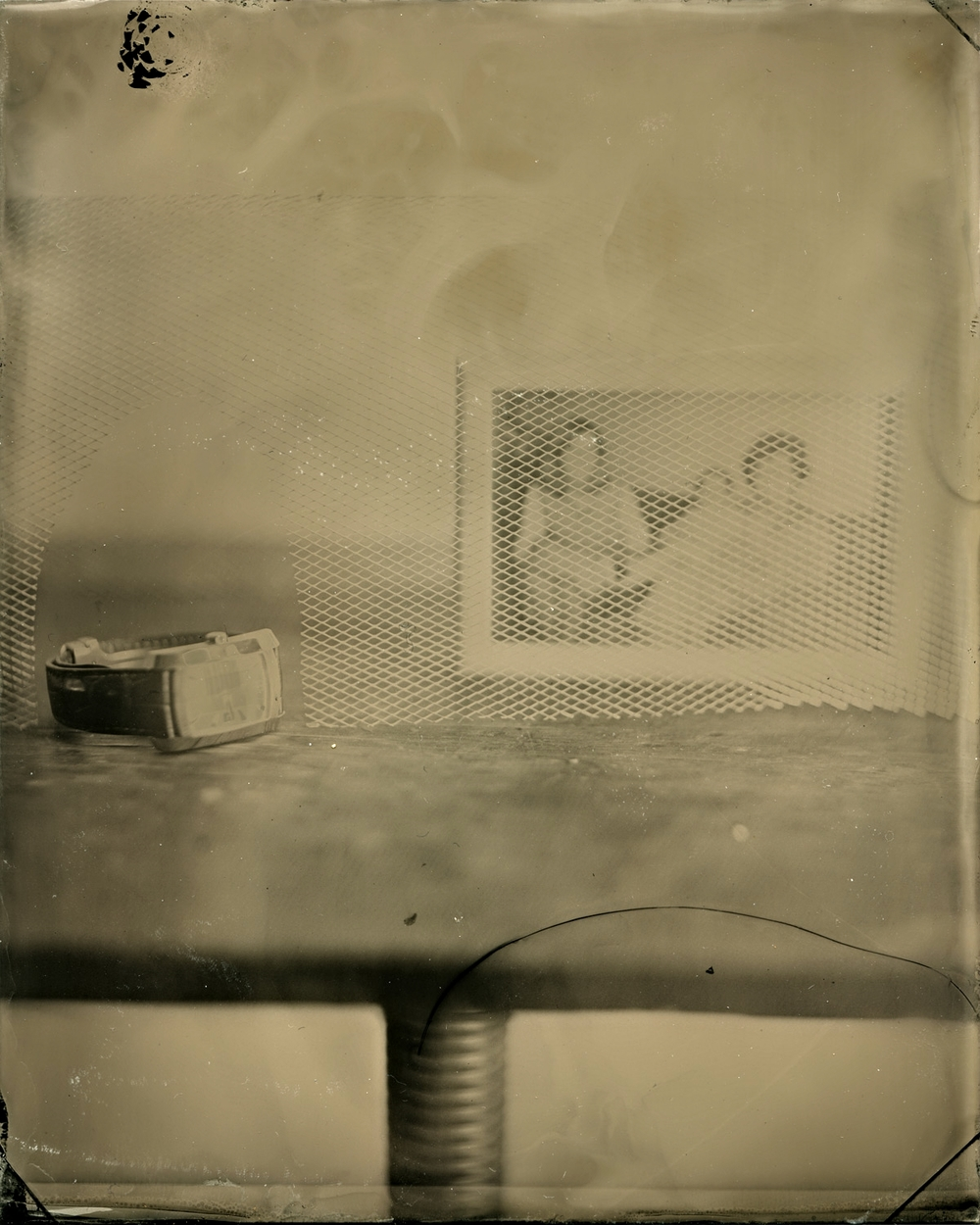Preservation  , 2012 Tintype, 4 x 5 inch