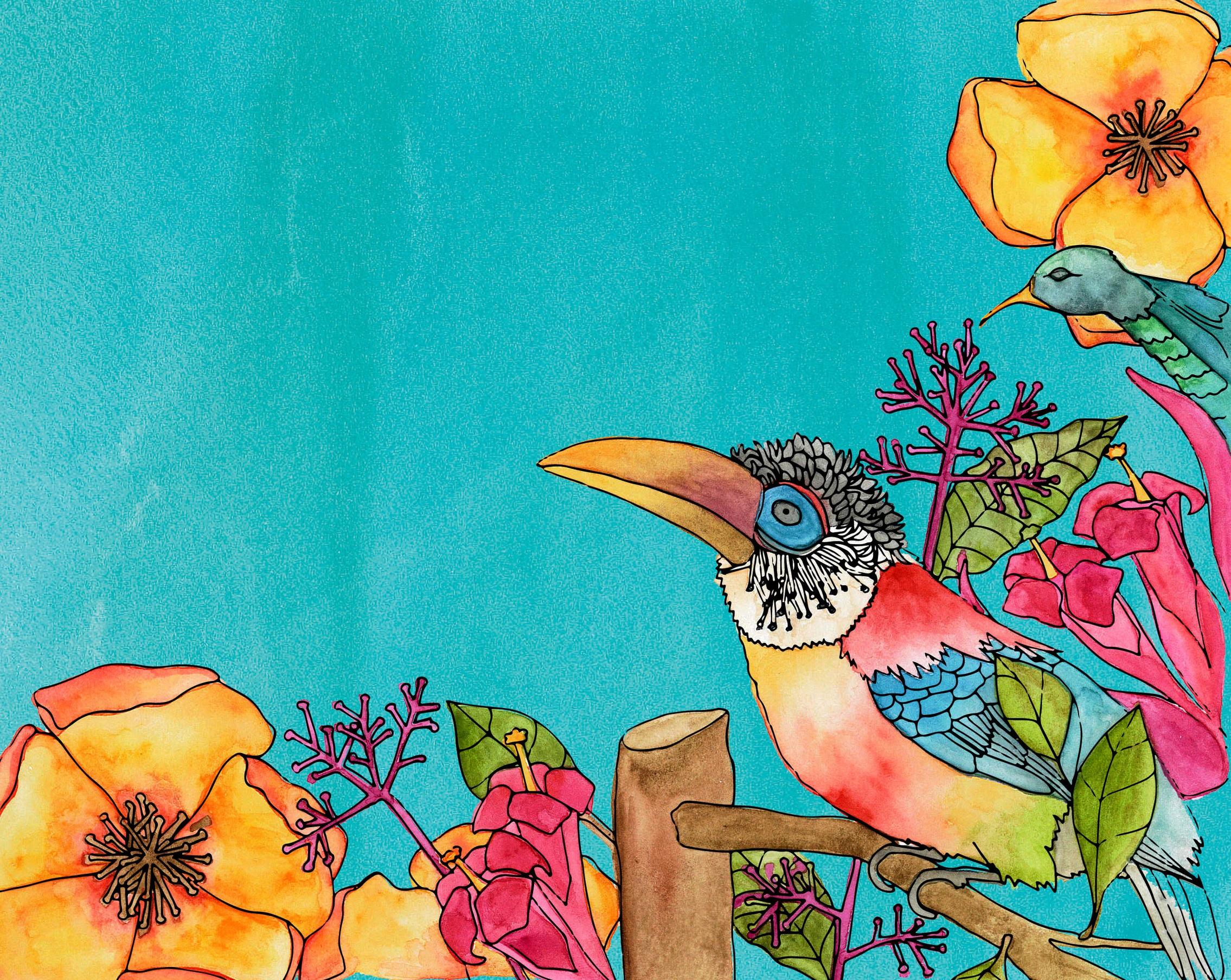 birds-01.jpg