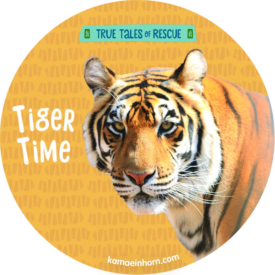 TigerV3.jpg