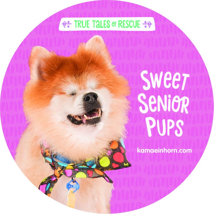 Pups V3.jpg