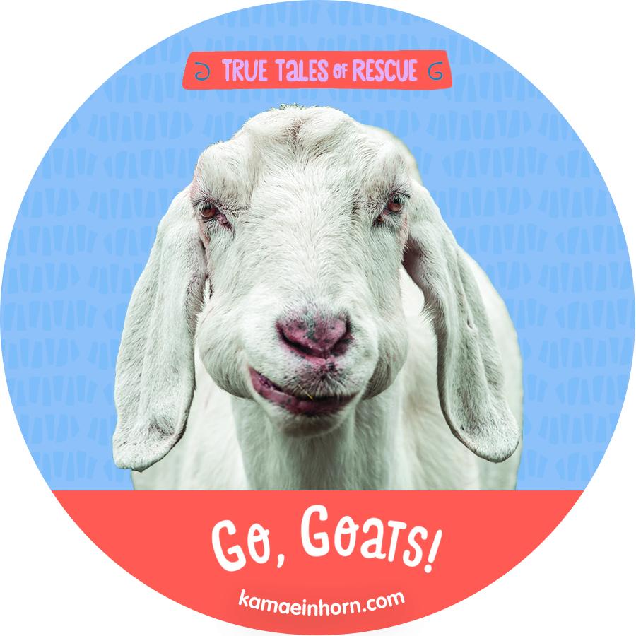Goat V3.jpg