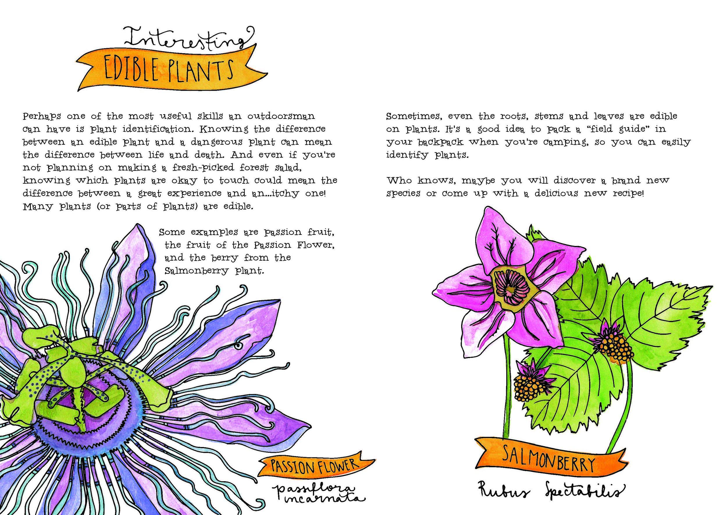 edible plants.jpg