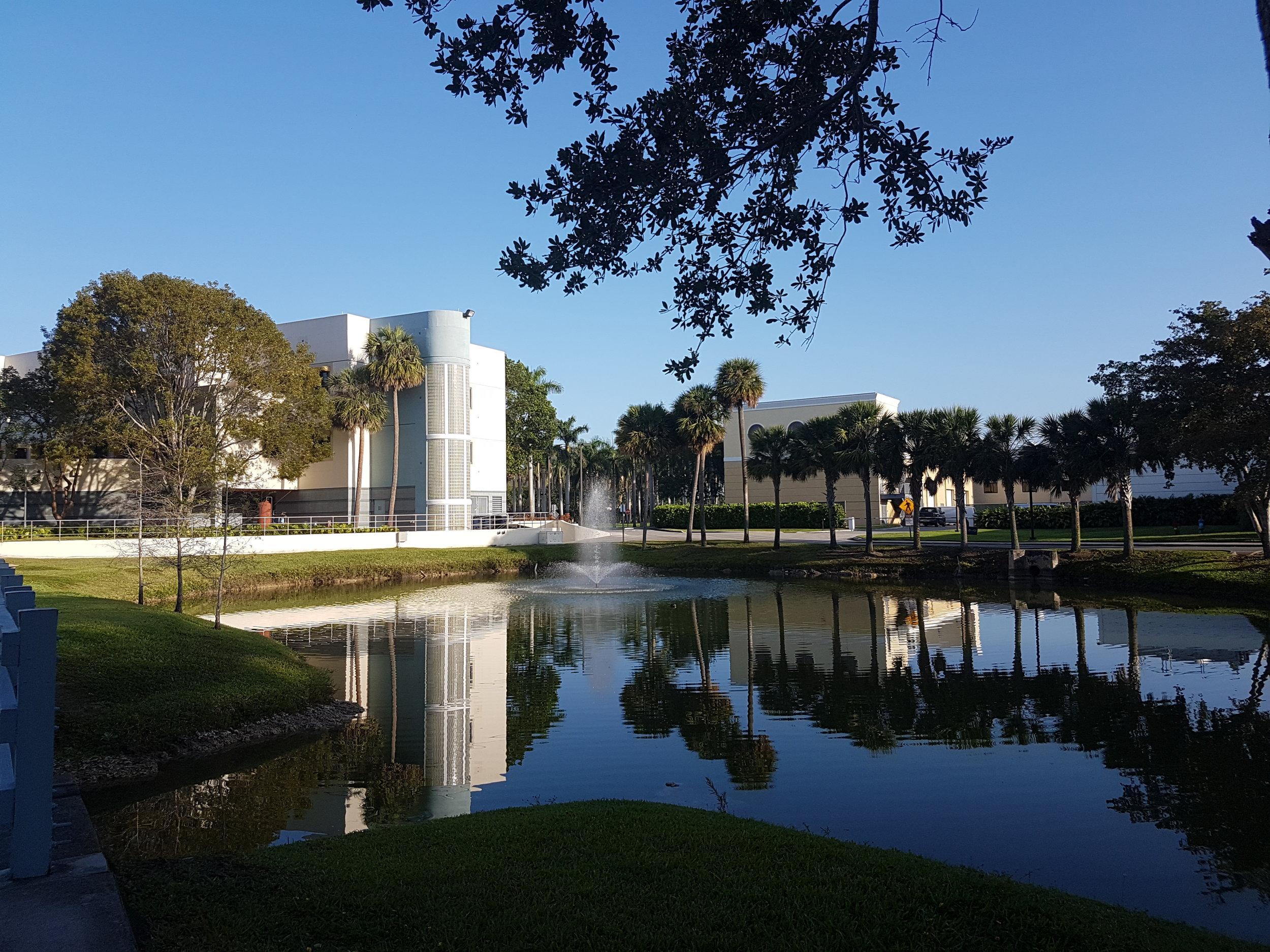 Florida International University - Miami Main campus