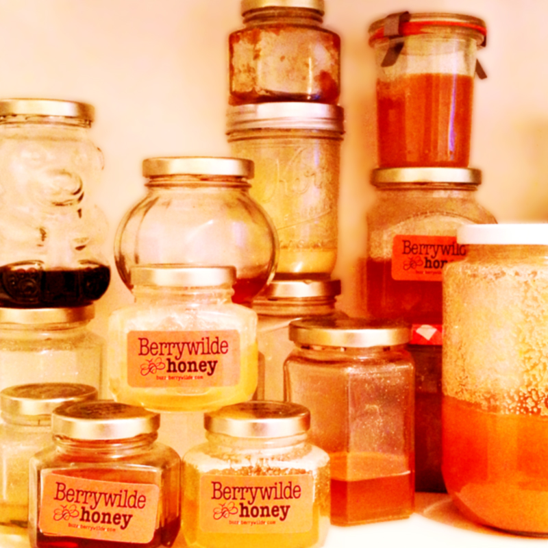 honey label > designed for my father in-law's berrywilde honey... from the bees on whidbey island