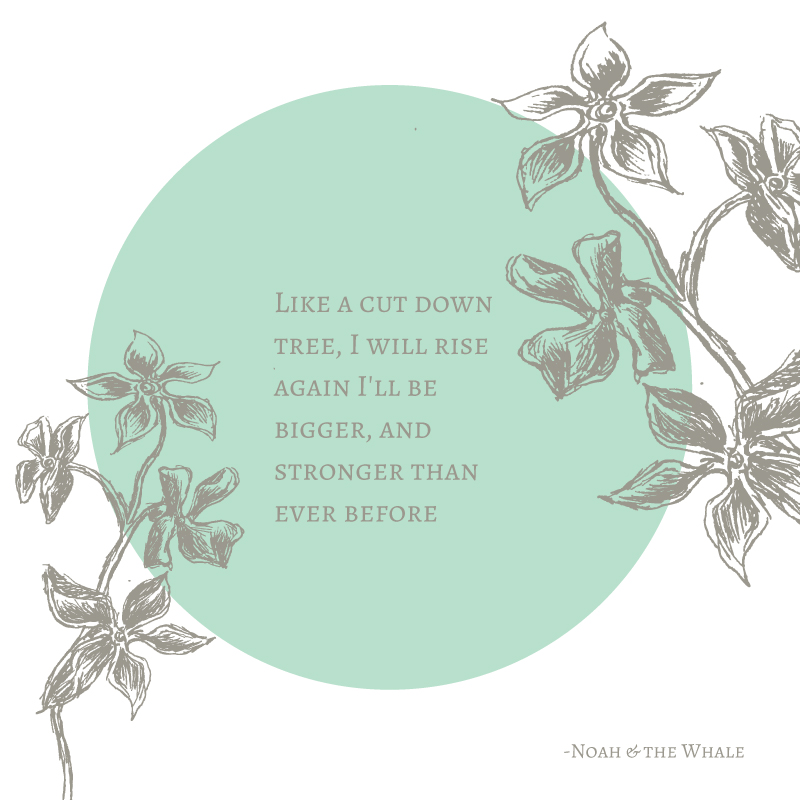 "Quote from one of my favorite songs from one of my favorite albums; ""First Days of Spring"" by Noah & The Whale.  Give it a listen  here"