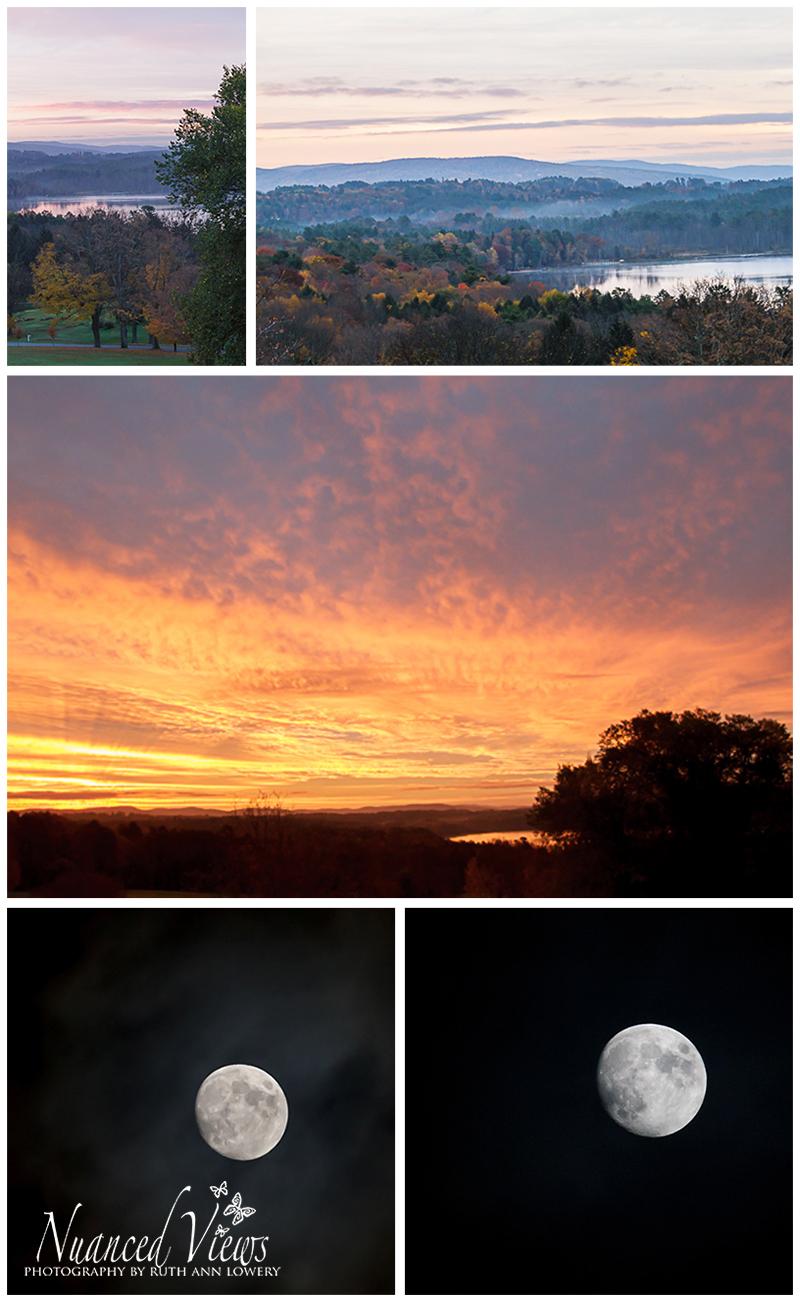 Blog-Collage-1383776149246.jpg
