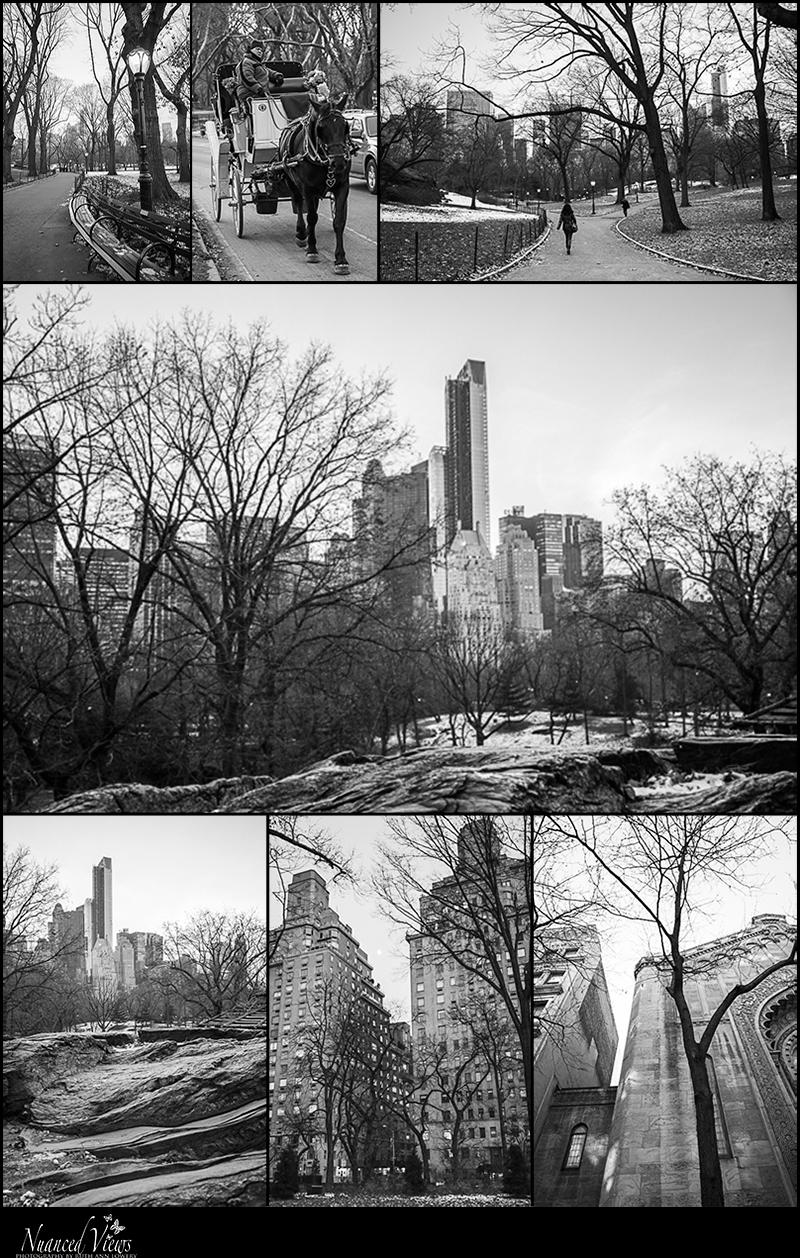 Blog-Collage-1387314476059.jpg