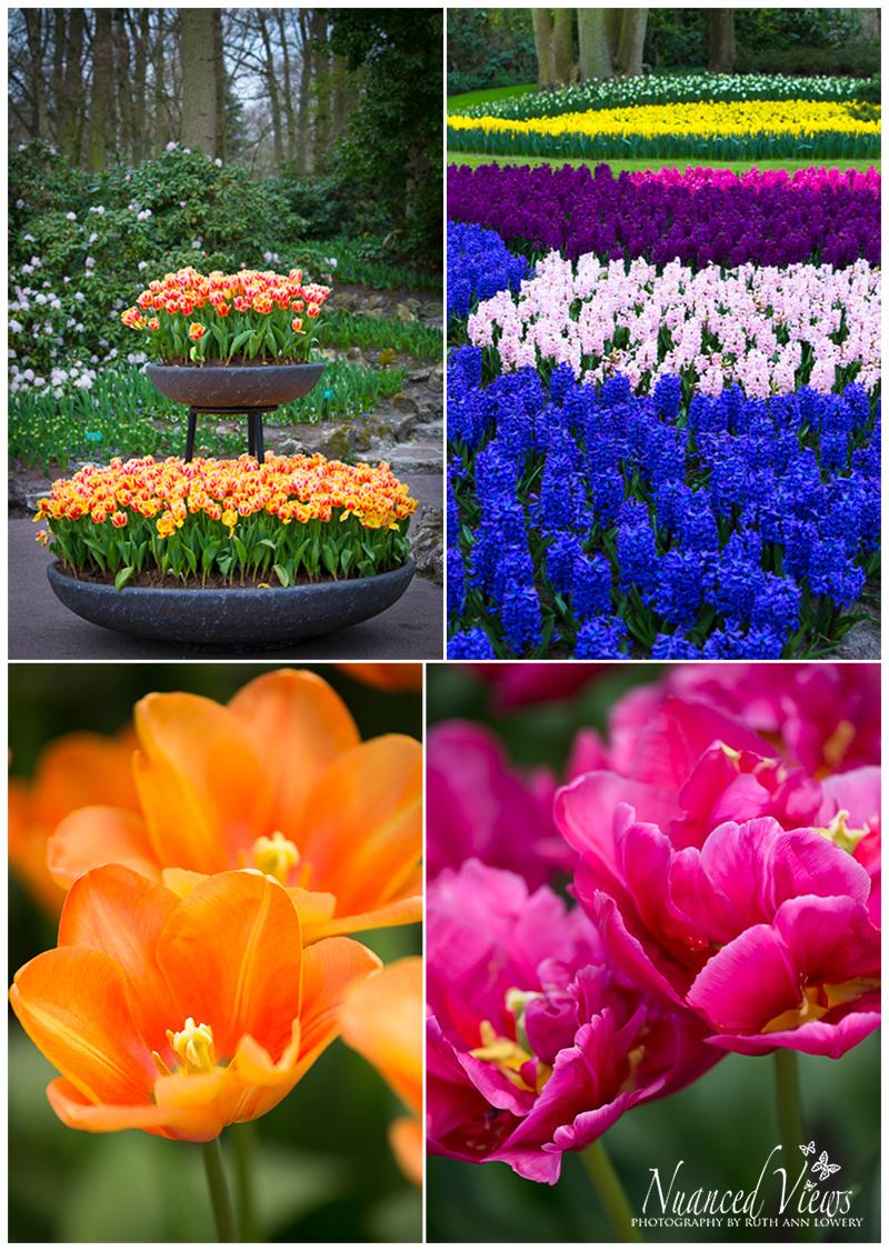 Blog-Collage-1393963962834.jpg