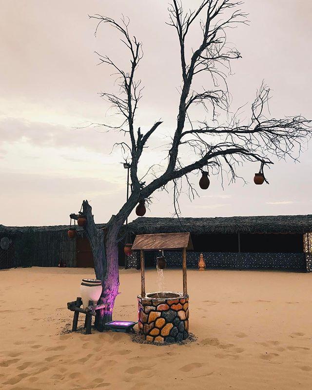 The camp we went to after the dune bashing was beautiful! Like something out of a Bollywood film! #IquoinUAE #abudhabilife #desertsafari #desertcamp