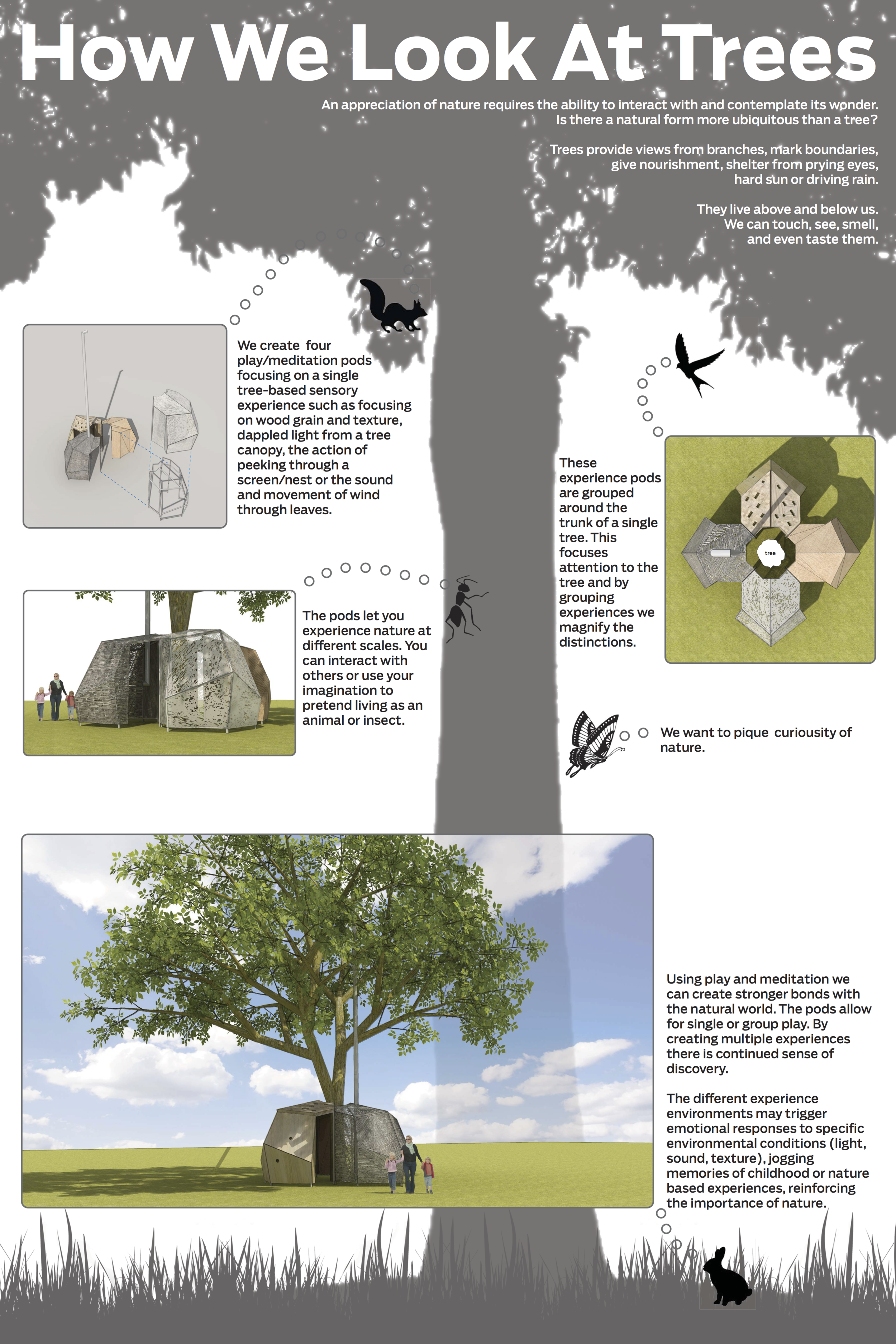 How We Look At Trees - Botanical Garden Design Concept