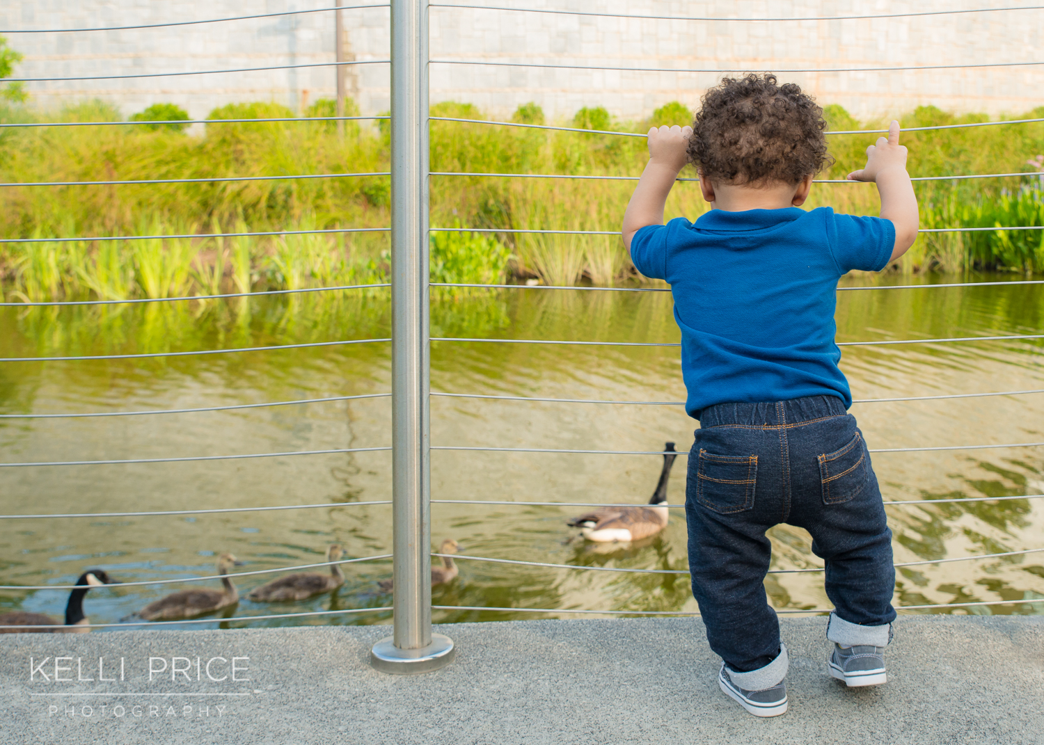 Watching the Ducks - 1 Year Old Family Session - Historic Old Fourth Ward Park, Atlanta, Georgia