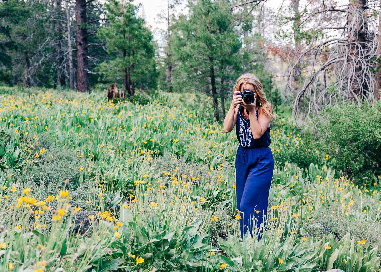 Wildflowers6_KelliPricePhotography_SagehenTruckeeCA_2019.jpg