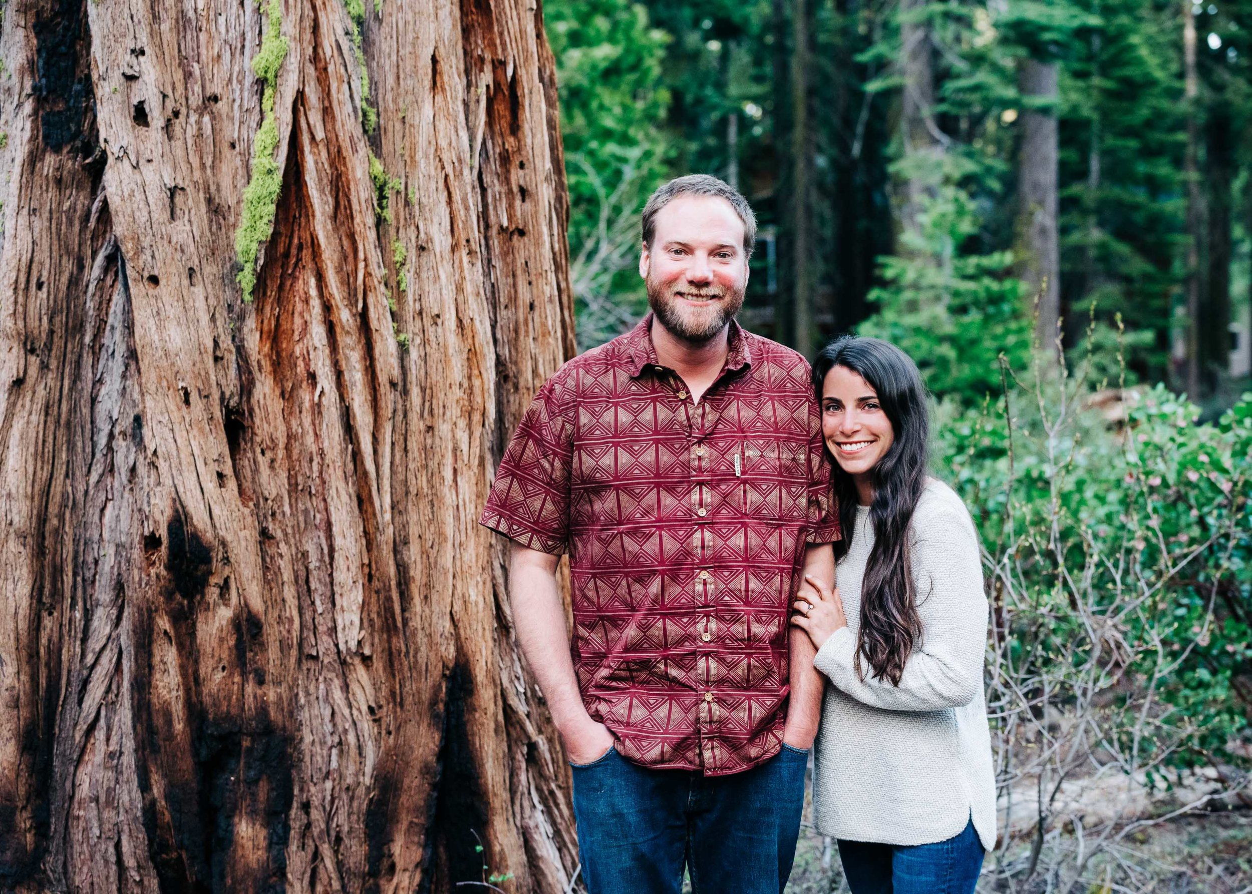 Redwood Engagement Session in Tahoe City