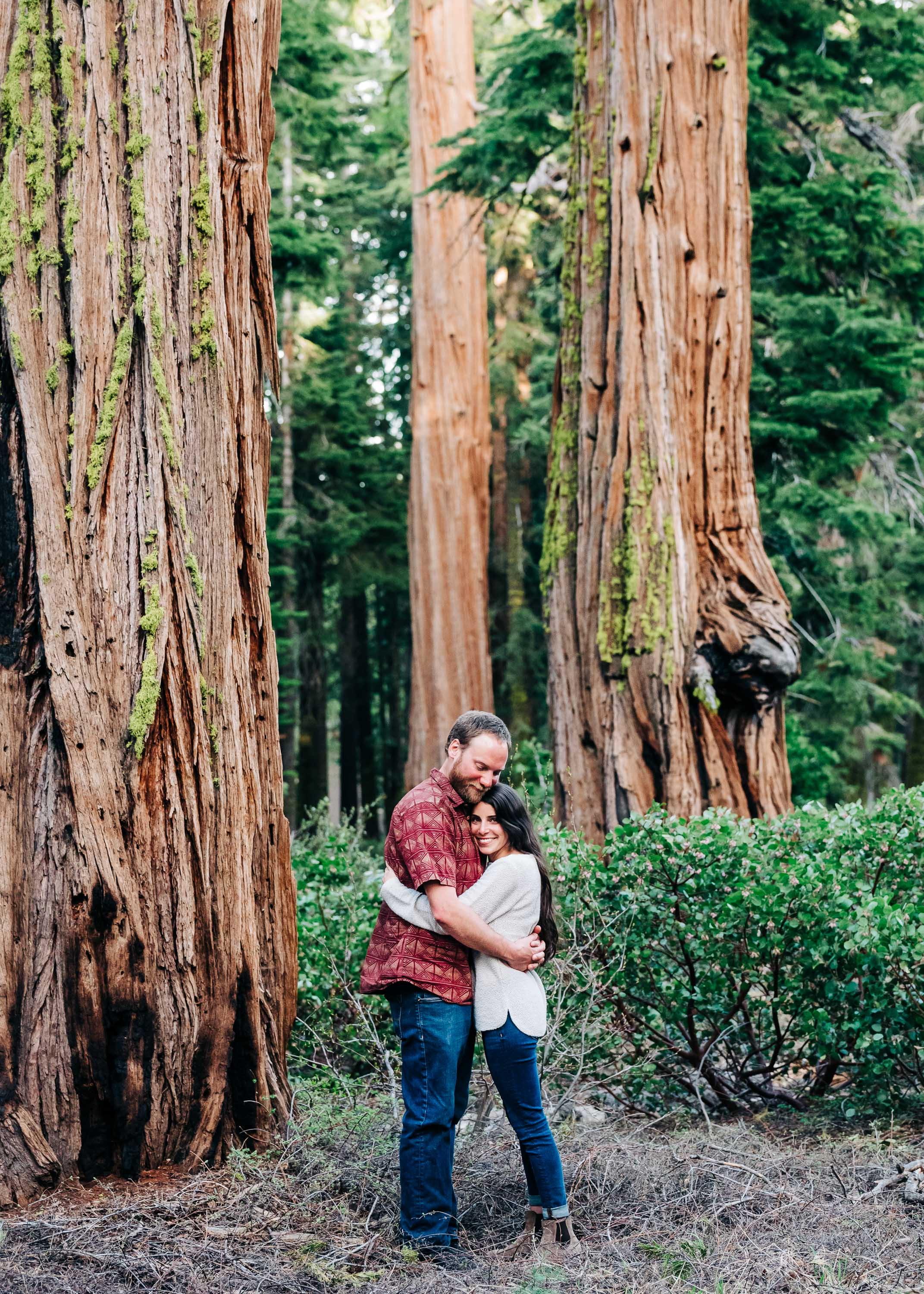 Redwood Engagement Session in Tahoe City, California