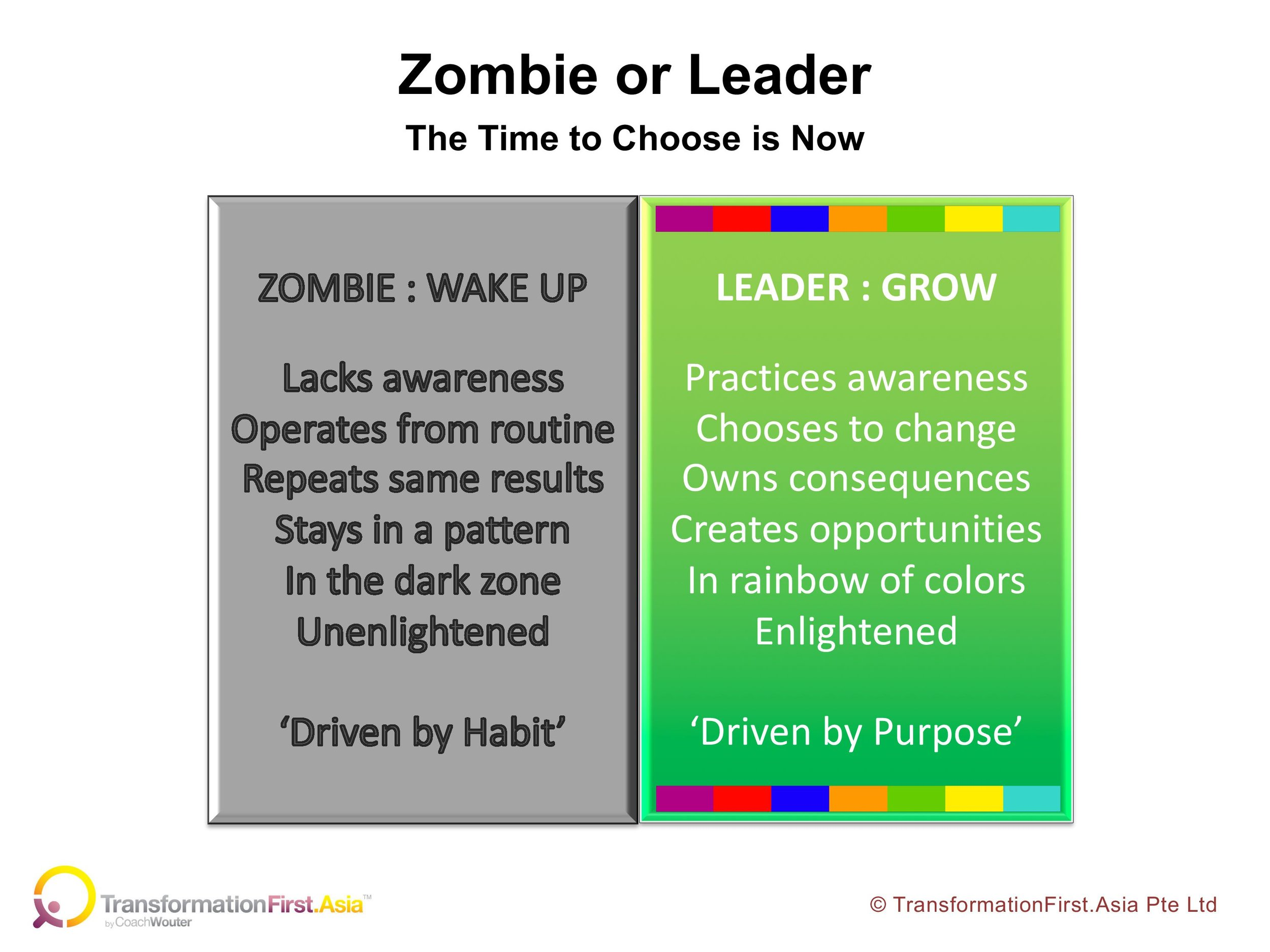 Zombie or Leader boxes.jpg
