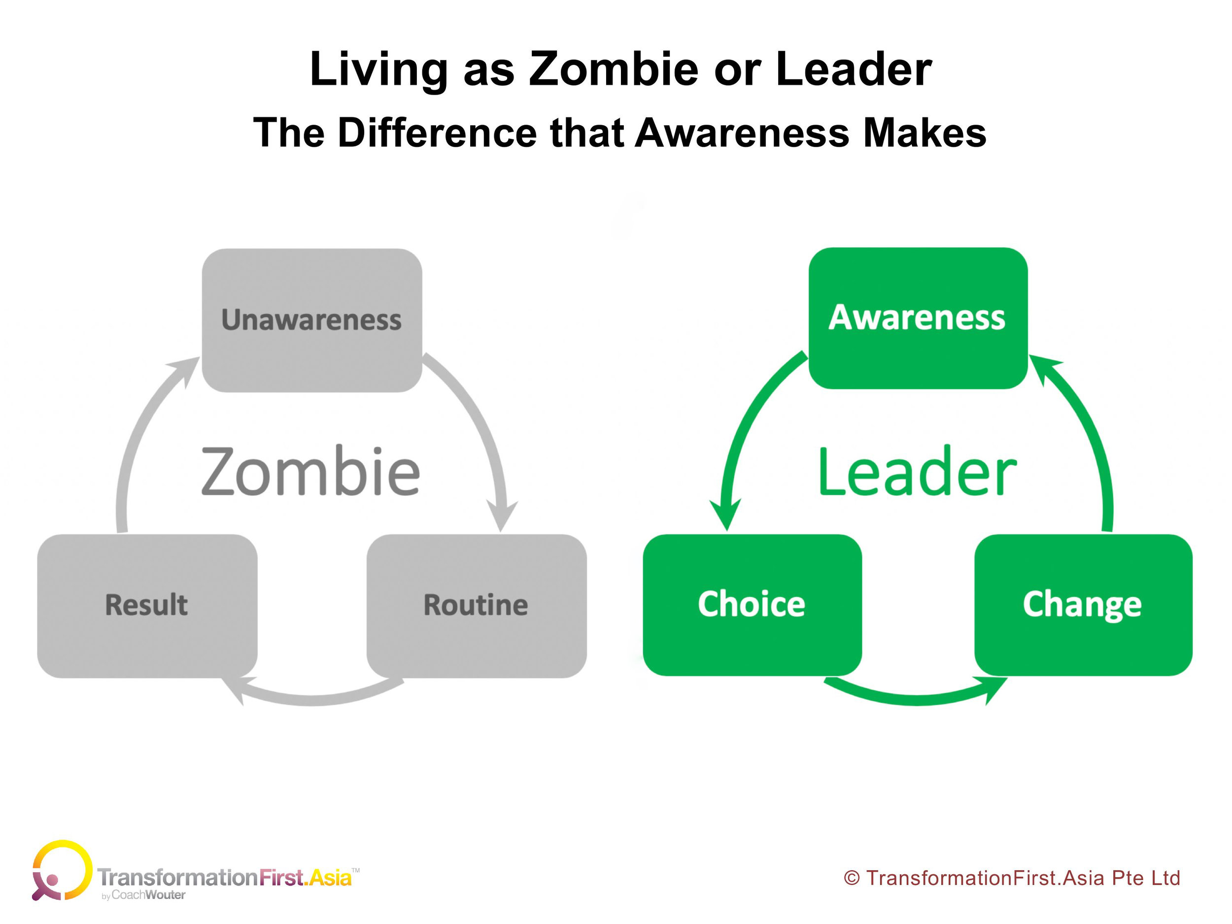 Zombie and Leader cycles.jpg