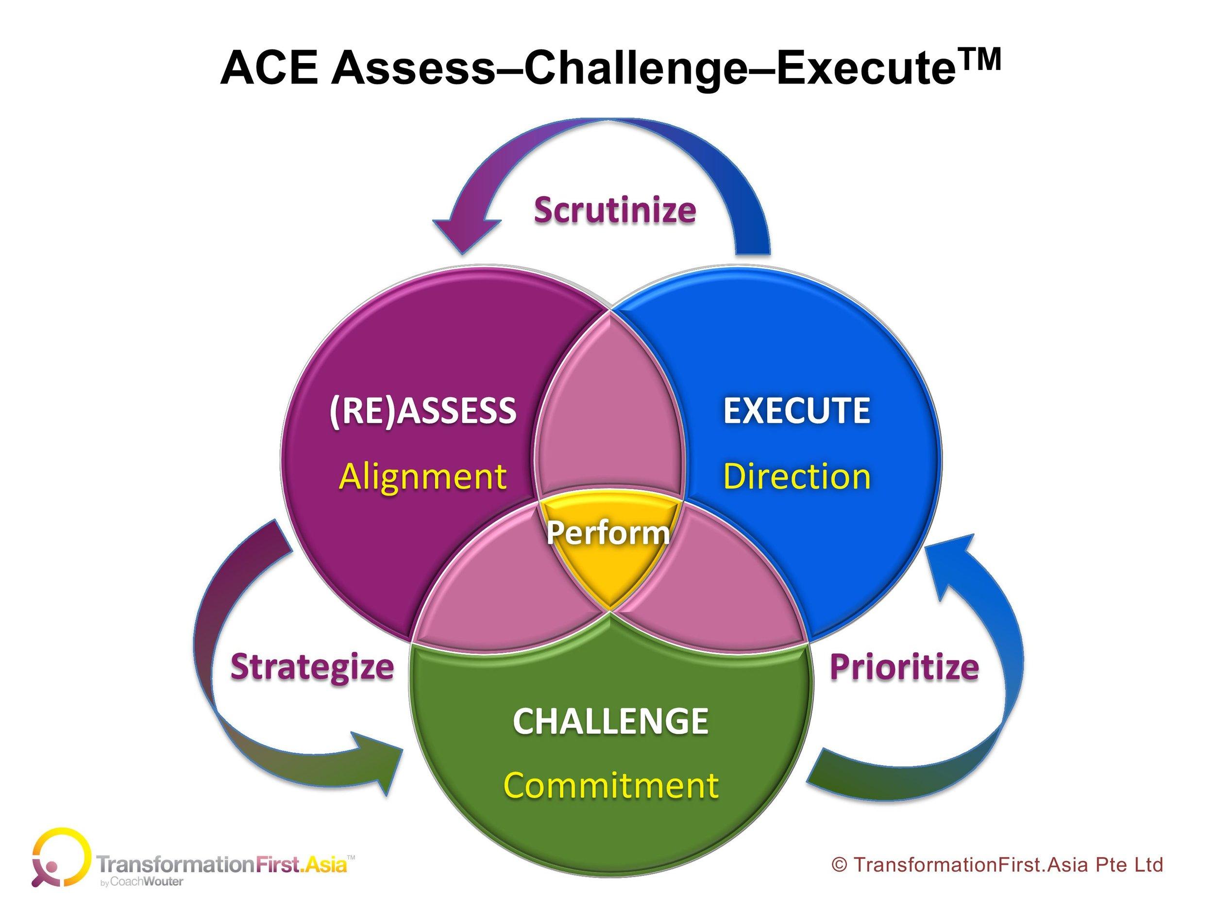 ACE Assess Challenge Execute.jpg