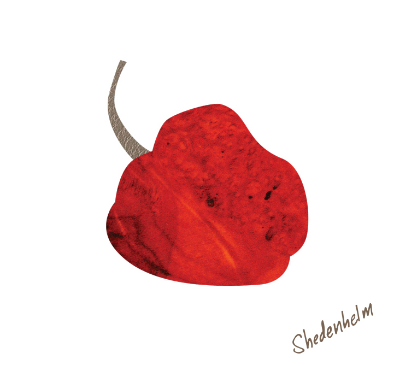 Kendra Shedenhelm_Habanero Pepper_MDelishBoutique