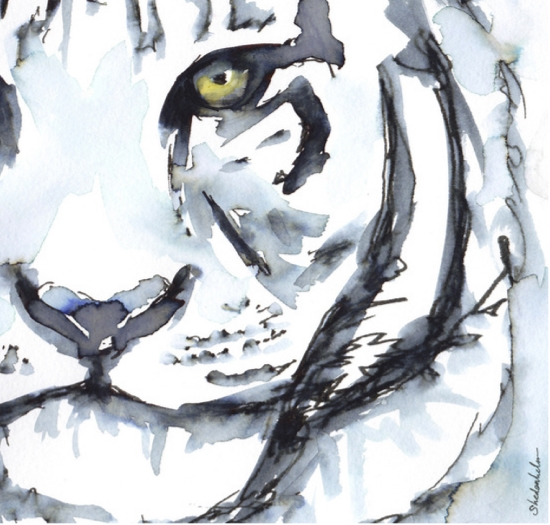 Kendra_Shedenhelm_Watercolor_Sketch_Tiger