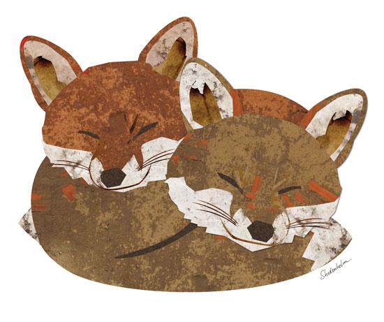 Kendra Shedenhelm_Illustration Friday_Shelter
