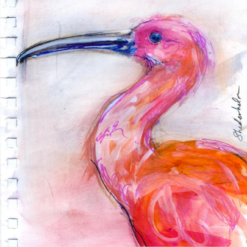 Watercolor of a scarlet ibis. One of the images picked up by  GreenBox Art + Culture  for 2018, watercolor and pencils, Copyright 2017 Kendra Shedenhelm