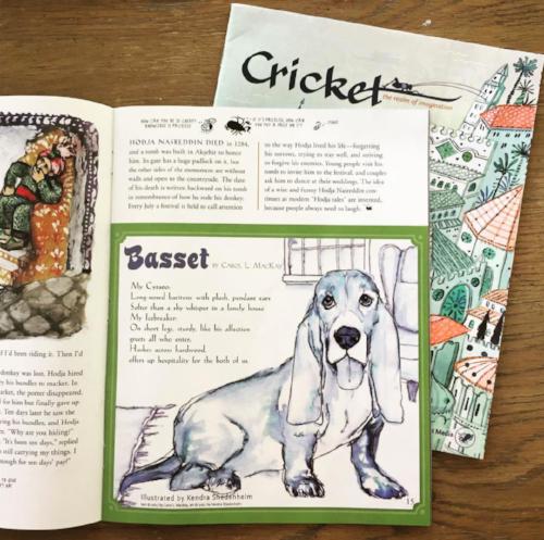 My basset hound illustration in Cricket magazine!