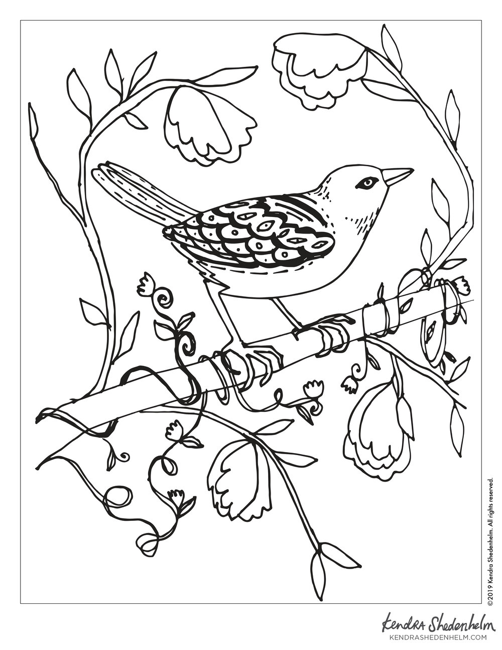 Bird On A Branch Coloring Page Kendra Shedenhelm
