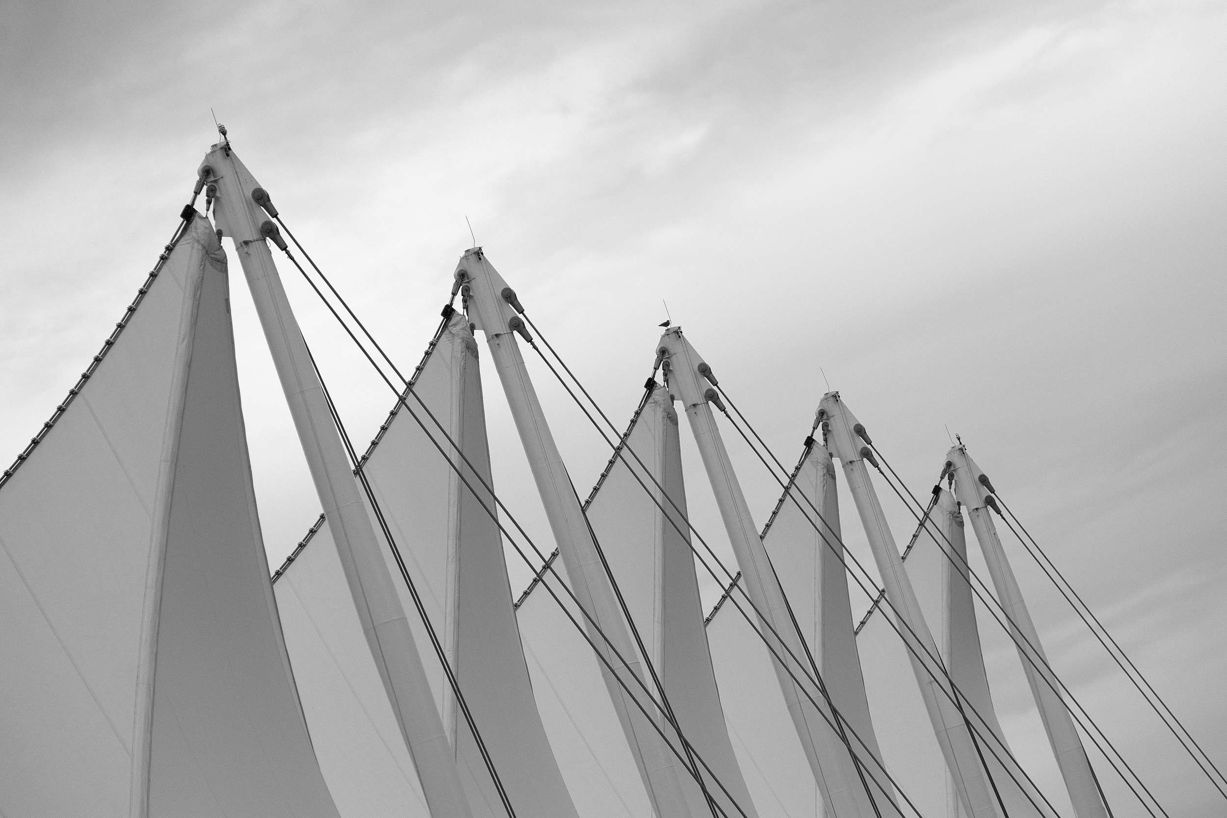 Sails —Fujifilm X-E1 with Fujinon 55-200mm; f/5.0 at 1/1400 sec. ISO800.