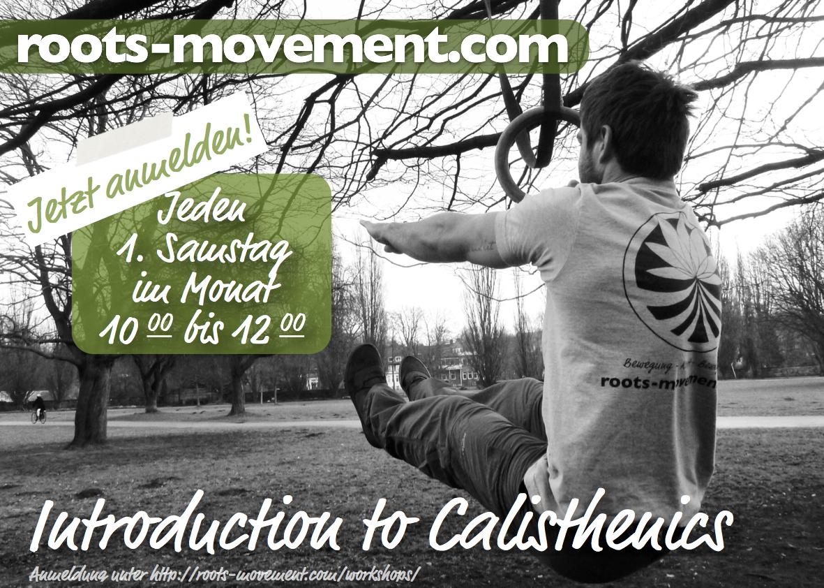 RM März 2014 Calestetic Workshop .jpg