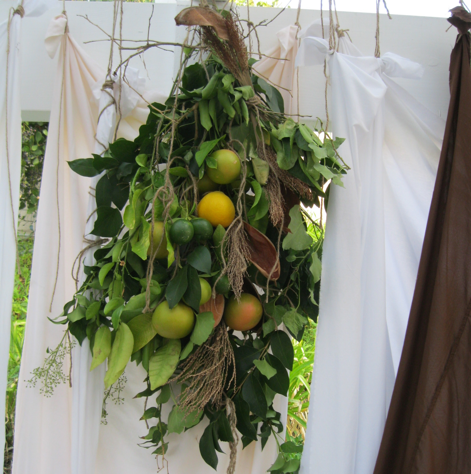 Hanging fruit from the sukkah!