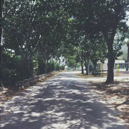 Kfar Silver walkway.jpg
