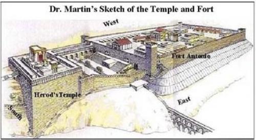 Martin's Drawing.jpg