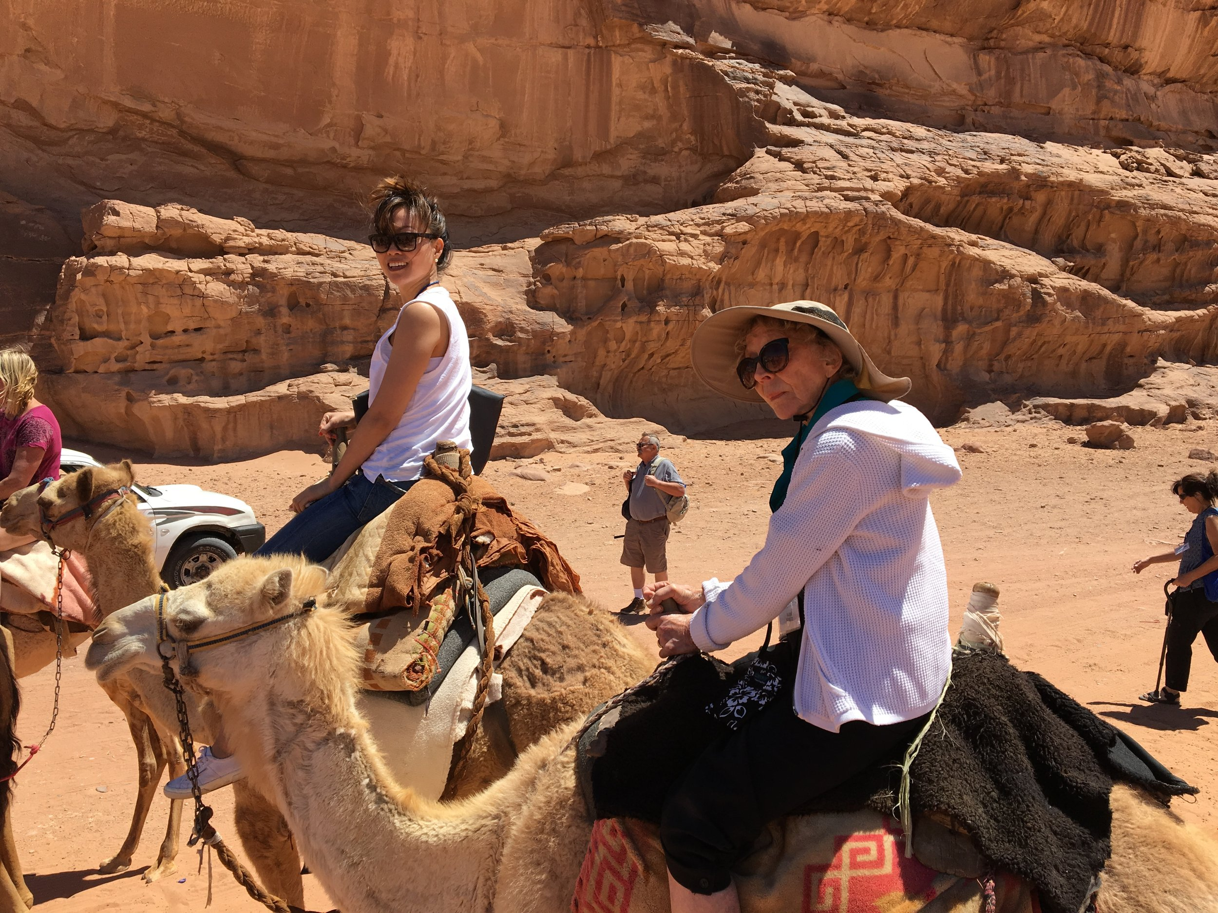Camel rides in the Jordanian desert